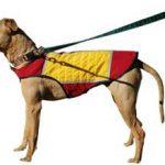 COOLMOR Dog Cooling Vest