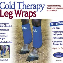 EQUESTRIAN THERAPY