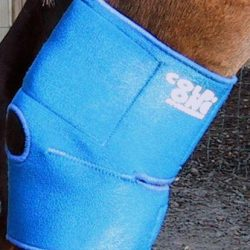 Hock, Hoof and Knee Ice Compression Wrap