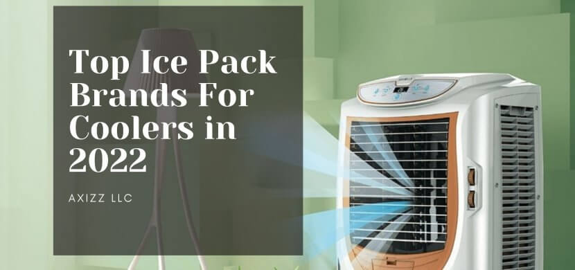 Ice Pack Brands For Cooler in 2022